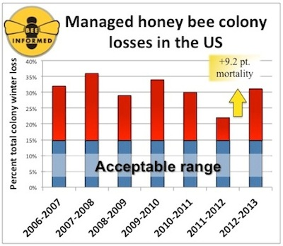 honeybee_losses