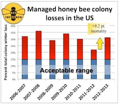 honeybee_losses