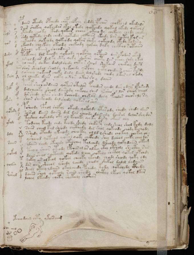 Voynich_Manuscript_(119)