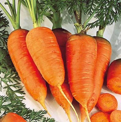 Nante carrots